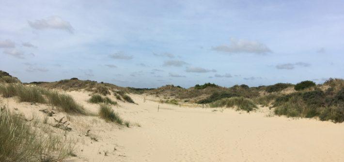 Meer und Strand an der belgischen Kueste