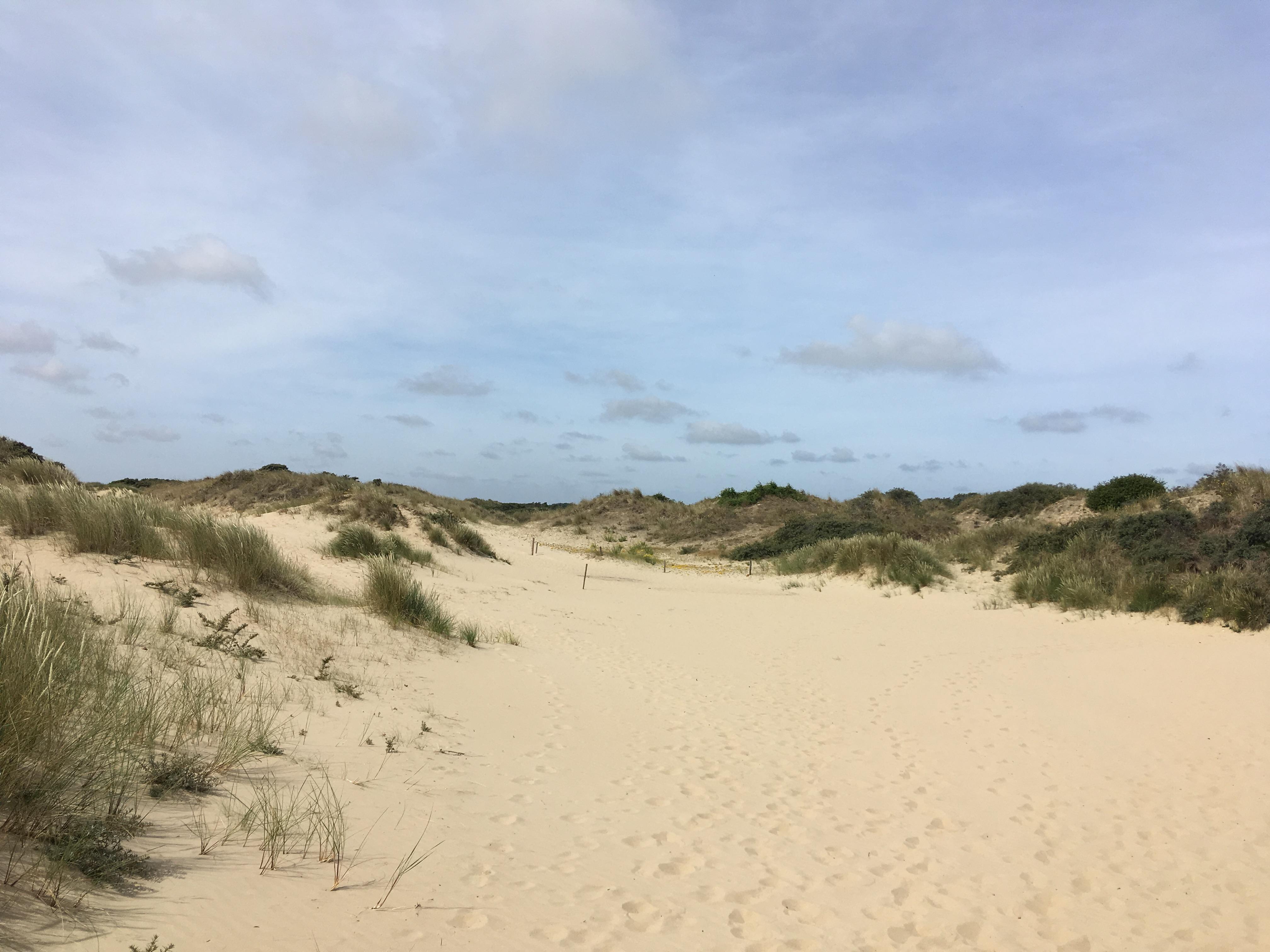 Von De Panne nach Knokke- zu Fuß entlang der belgischen Küste