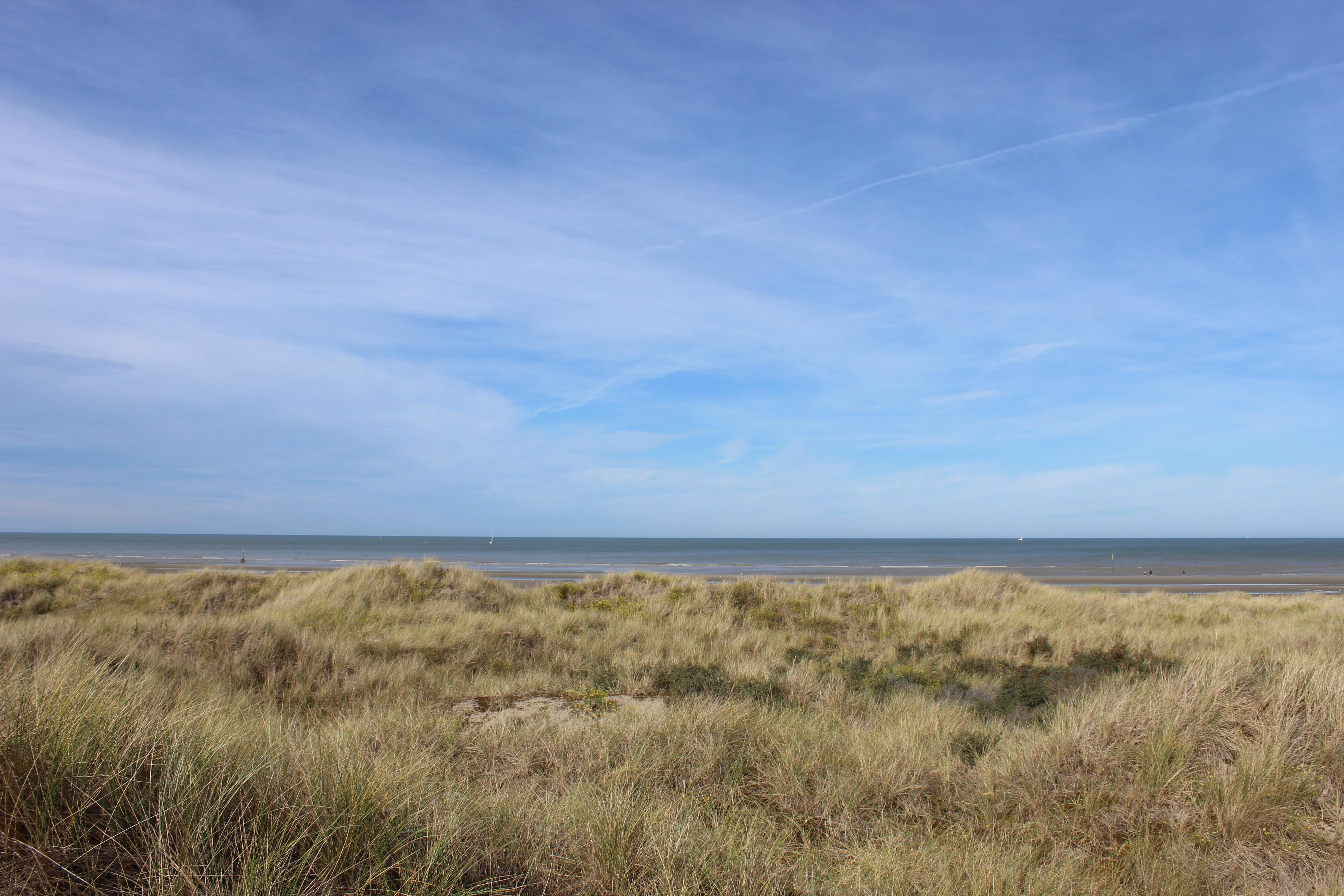 Naturbelassene Küste