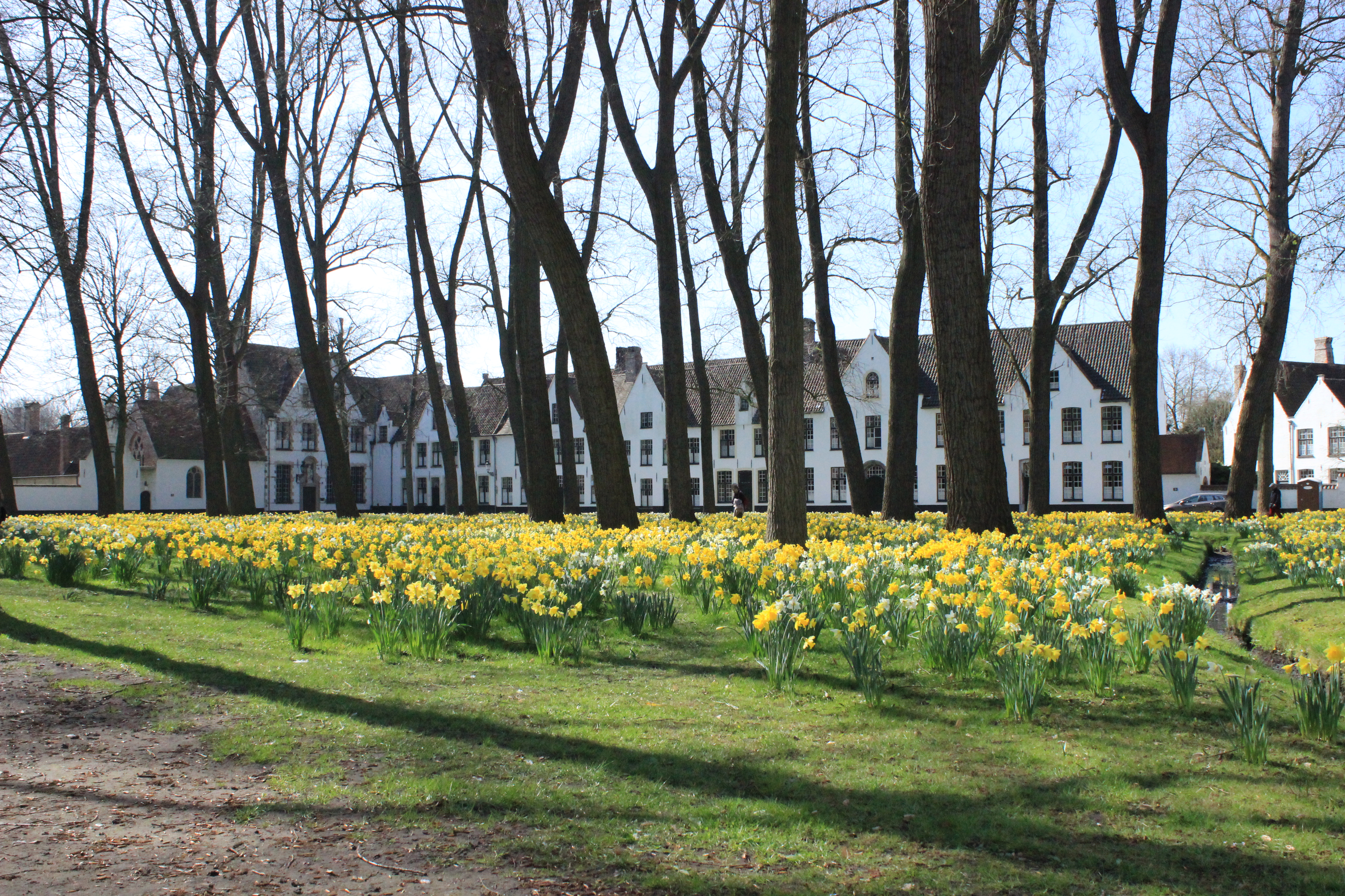 Brügge – die schönste Stadt Belgiens?