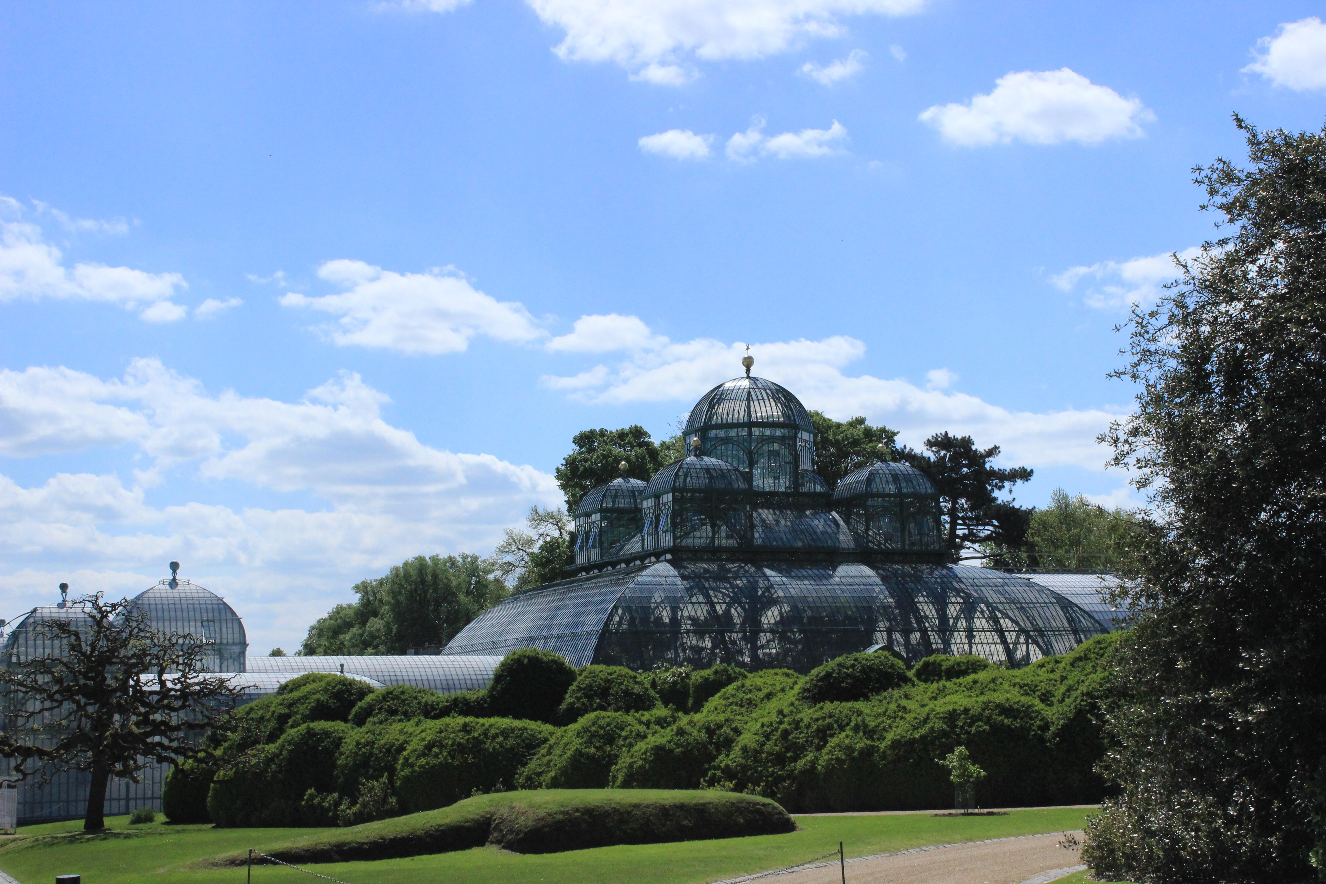 Die königlichen Gewächshäuser von Laken – tropischer Regenwald in Brüssel