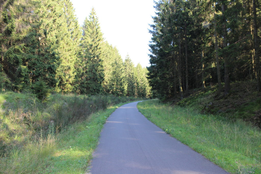 Die Strecke zwischen Raeren und Roetgen führt durch dichten Wald.